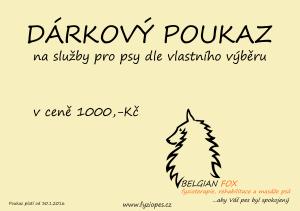 Poukaz_1000 copy